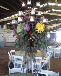 Wedding Decorations Victoria TX